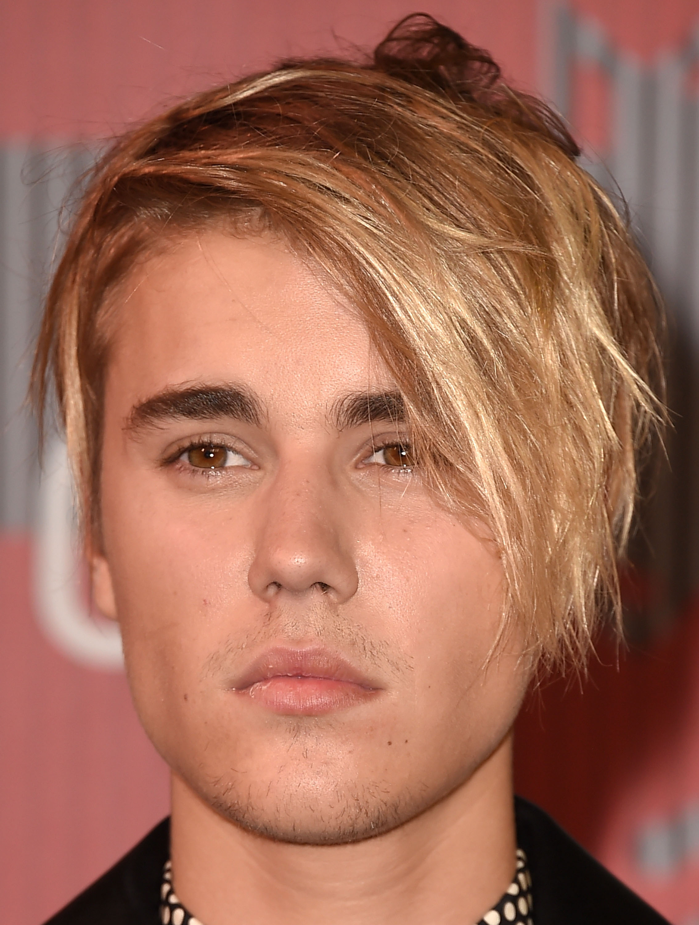 Justin bieber real hair color book covers
