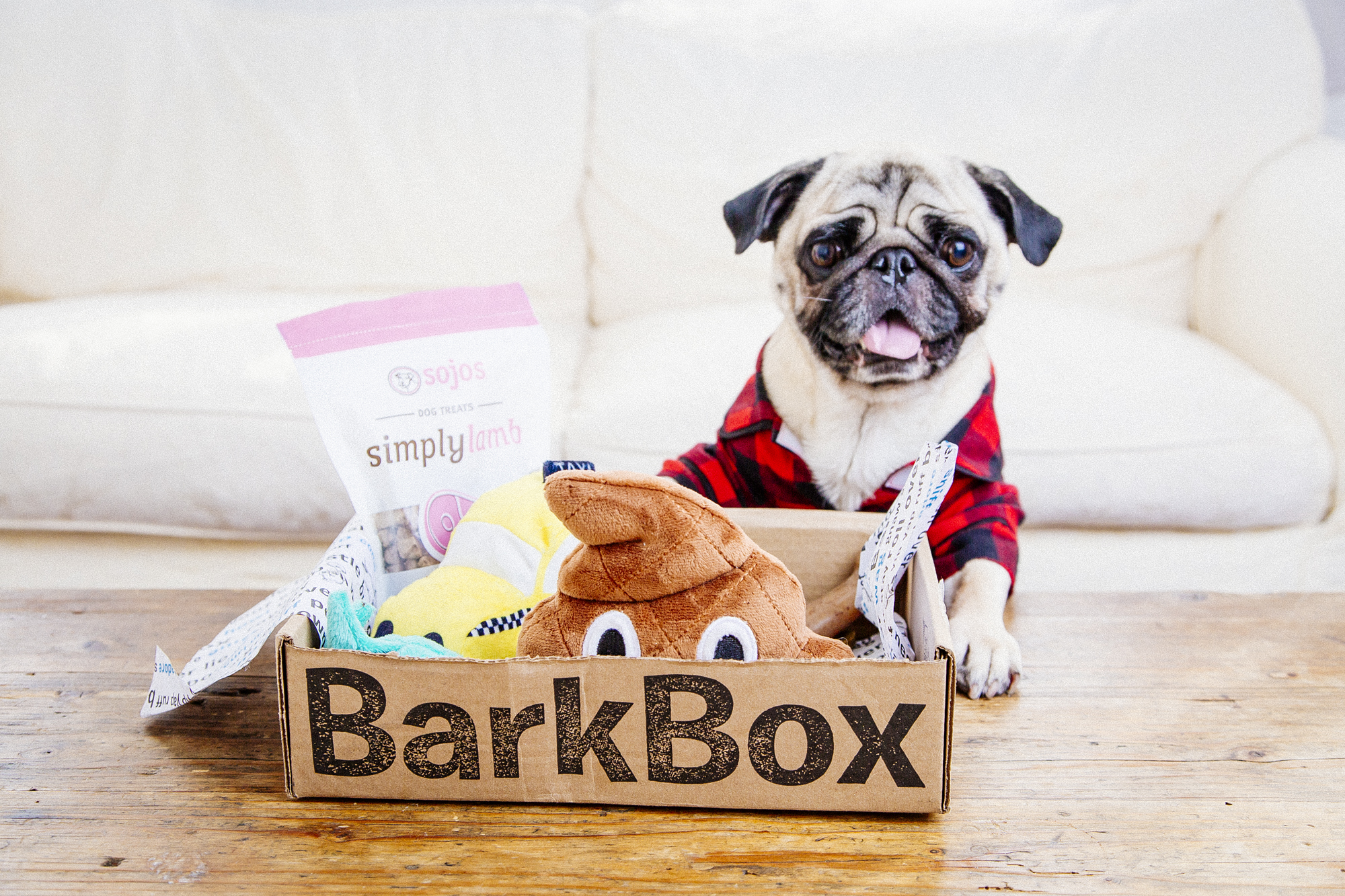 Best Monthly Subscription Boxes For The Holidays Holiday