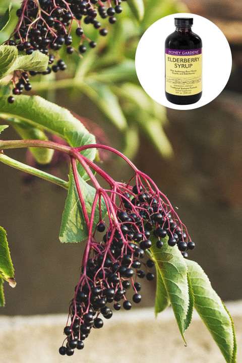 """Elderberry is a folk remedy for colds and flu, and studies suggest that folk wisdom was right.  Taken at the first sign of a cold or the flu, elderberry extract (called Sambucol) appears to ease symptoms and speed recovery – in some studies, dramatically. You can even make your own in late summer when elderberries are at their peak of ripeness. Here's how you do it:  cook a cup of berries, a few slices of ginger and a cinnamon stick in 2 cups of water (bring to a boil, then lower to simmer for a half-hour). Let this cool a bit, and then strain through a cheesecloth. Mix equal parts syrup and honey, and store in sterilized jars. Either seal the jars as you would home-made jam, or you can keep your elderberry syrup in the refrigerator for several months (just enough time to get you through a round of winter flu).""—Annie Kay, Lead Nutritionist at Kripalu Center"