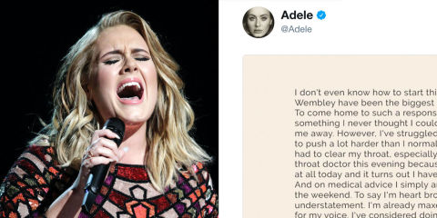 Adele Cancels Tour Dates, Vocal Cords Damaged