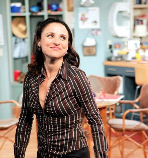 Lady Middlebrow: Julia Louis-Dreyfus TV Characters