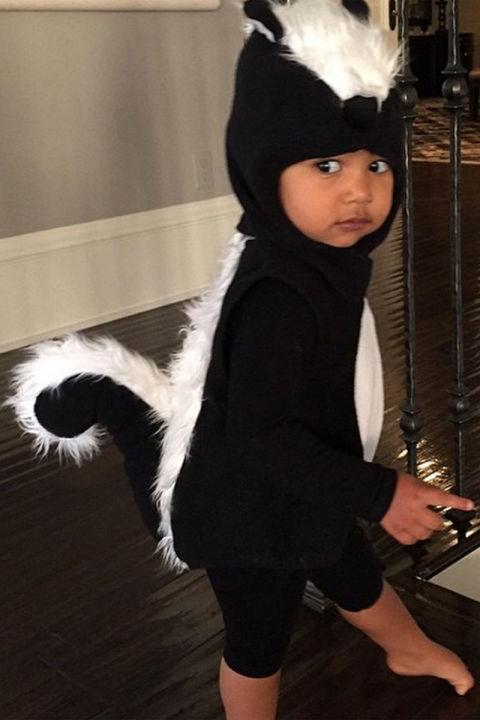 As a skunk.